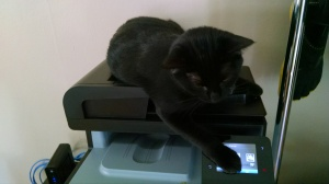 She's trying to print things like she knows she's not supposed to.